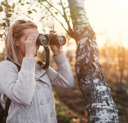 Your Pain-Free Guide to Searching for Stock Photos