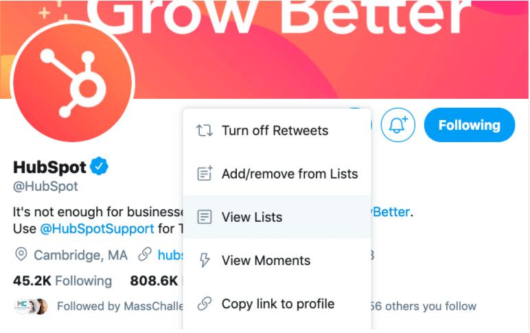 Hubspot Twitter List